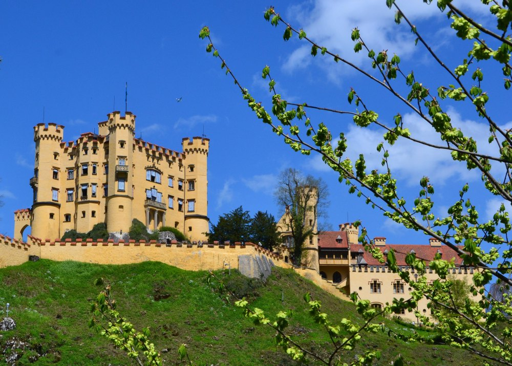 Замок Хоэншвангау в Германии