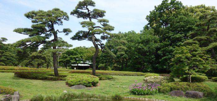 Для посещения открыт только Внутренний сад