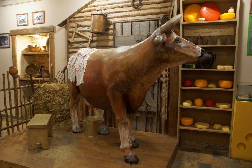 Внутри музея сыра